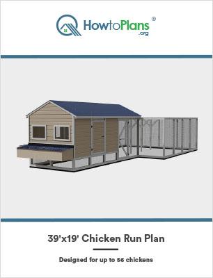 39x19 chicken run plan