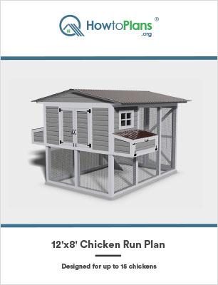 12x8 chicken run plan