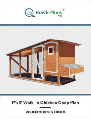 17x6 walk in chicken coop plan