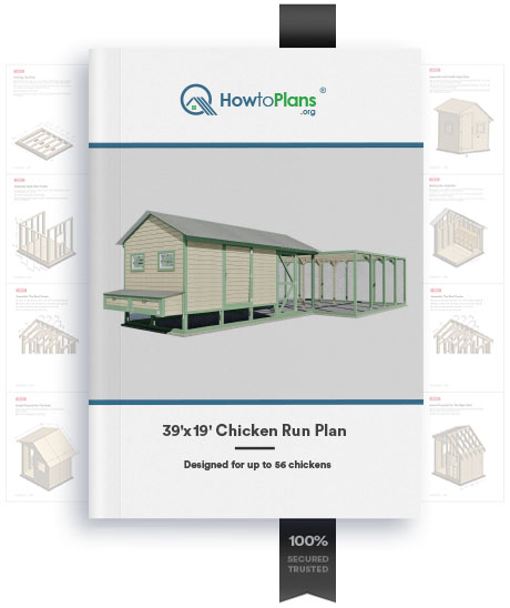 Double Max 39x19 Chicken Run Plan Howtoplans Org