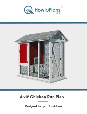 4x8 chicken run plan