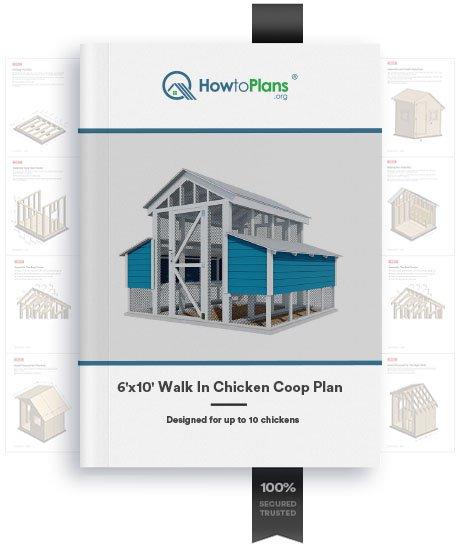 6x10 walk in chicken coop plan