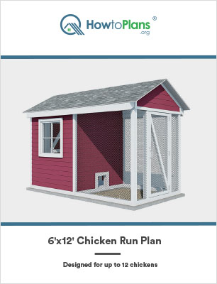 6x12 chicken run plan