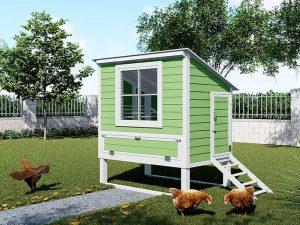 Chicken house plans