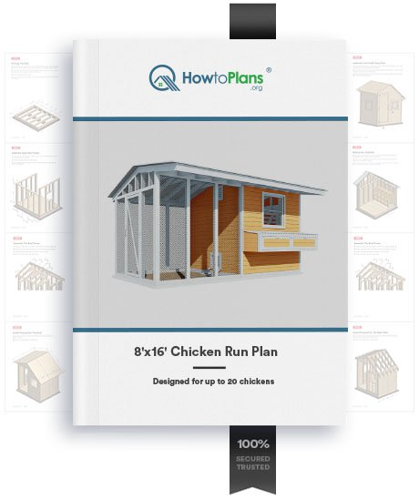 8x16 chicken run plan